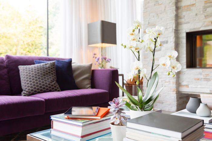 6 Awesome Coffee Table Books To Complete Your Living Room Decor Great Bend Appliance Center