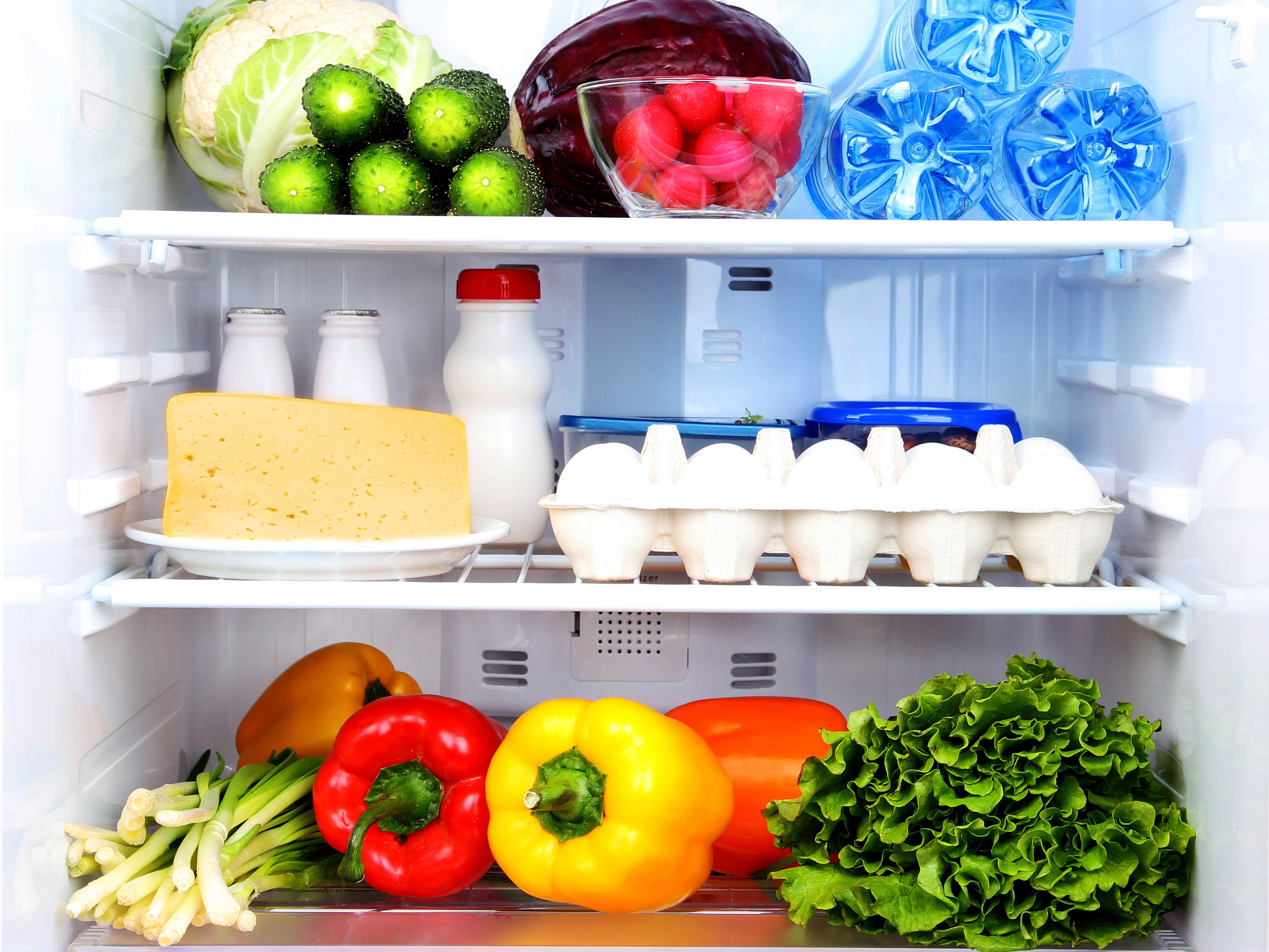 blog items you should never refrigerate home appliances