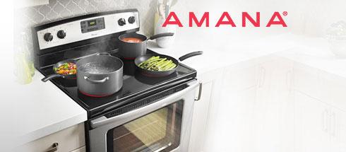 Amana-campaign-2col.jpg