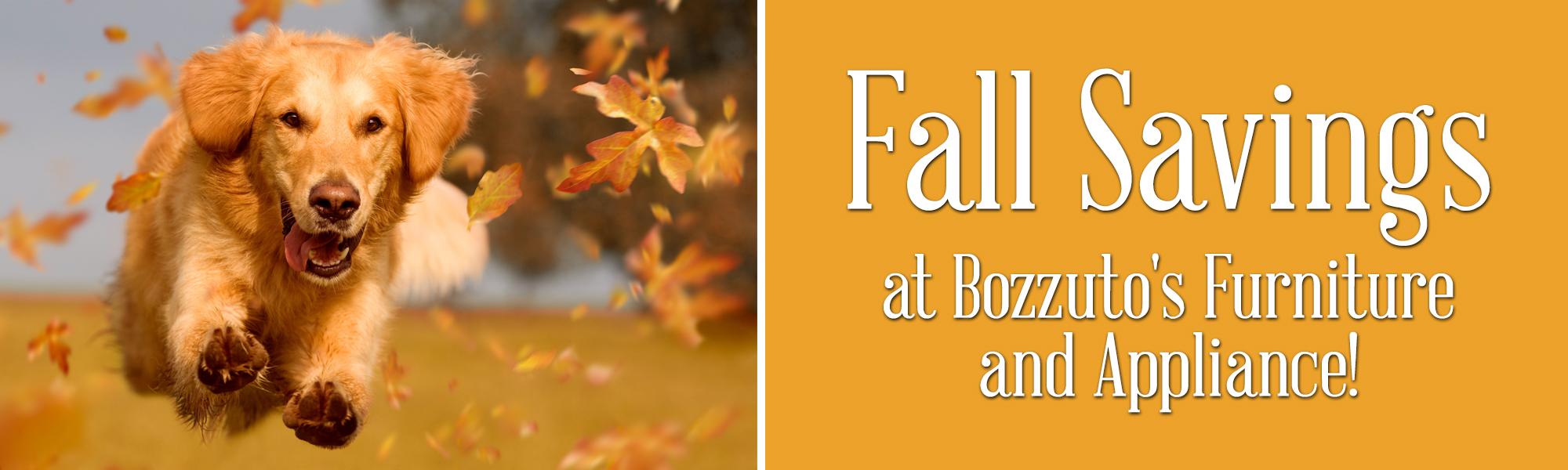 Fall Savings banner