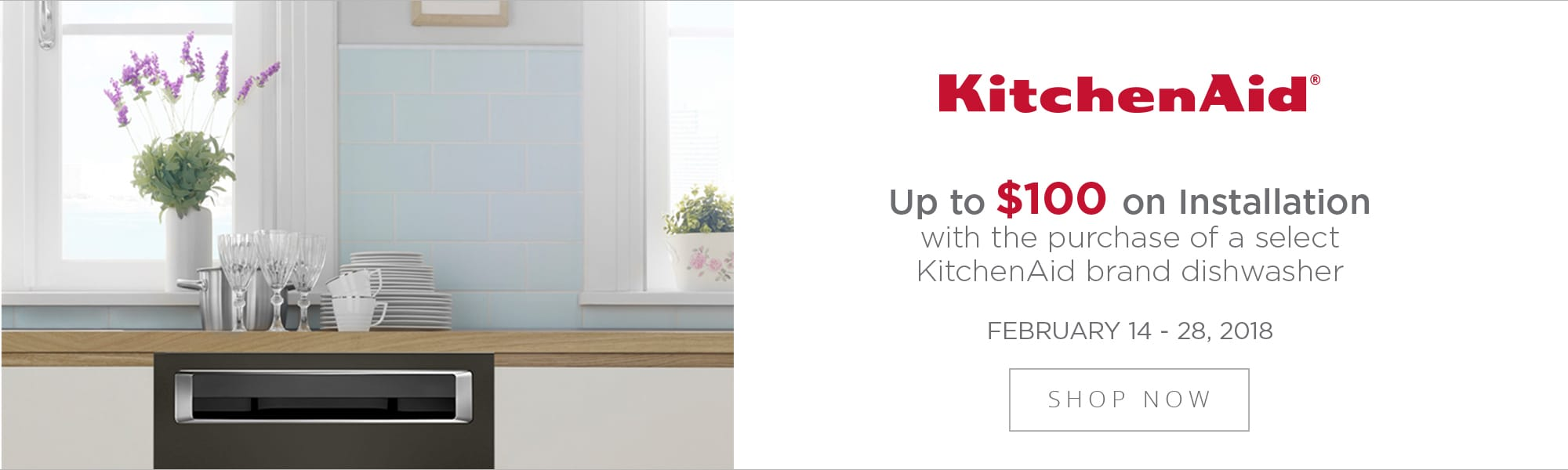 Kitchen Aid 100 off dishwasher install