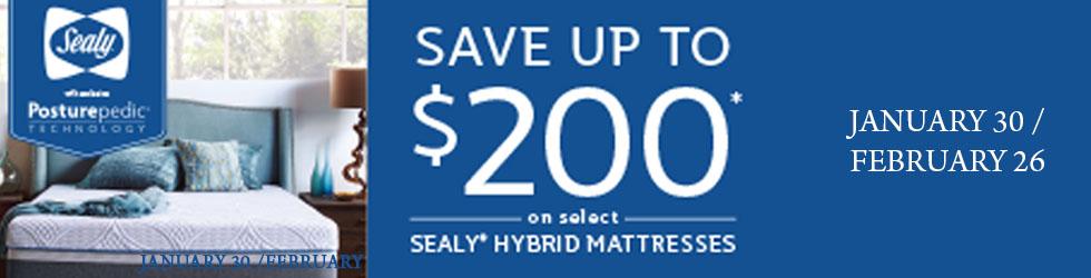 Sealy Mattresses